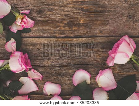 Blossom, flower. Beautiful, pink rose on the wooden table