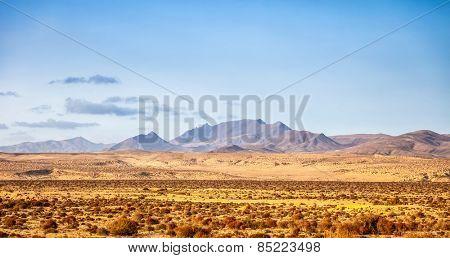 Sand desert on fuerteventura, canary