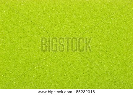 Green sponge, a background or texture