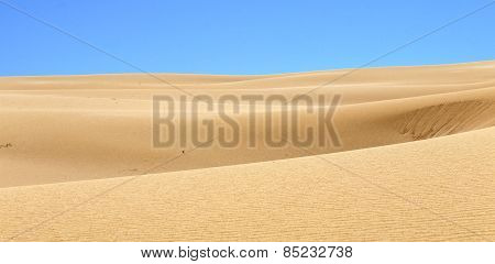 Desert Sand Pattern Texture Background From The Sand In The Dunes Of Corralejo