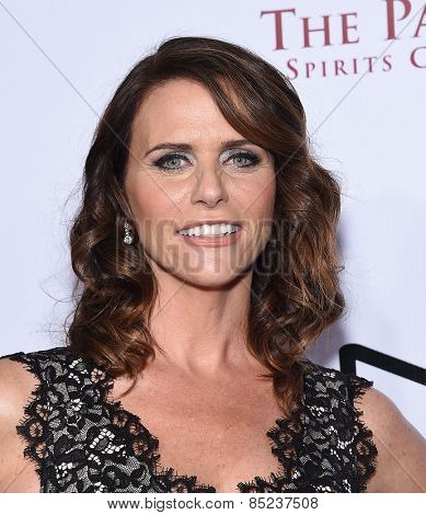 LOS ANGELES - FEB 14:  Amy Landecker arrives to the Make-Up Artists & Hair Stylists Guild Awards 2015  on February 14, 2015 in Hollywood, CA