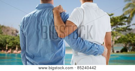 people, same-sex marriage, honeymoon, travel and vacation concept - close up of happy male gay couple or friends hugging from back over exotic resort beach background