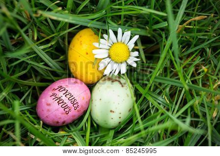 joyeuses paques against small easter eggs nestled in the grass with a daisy