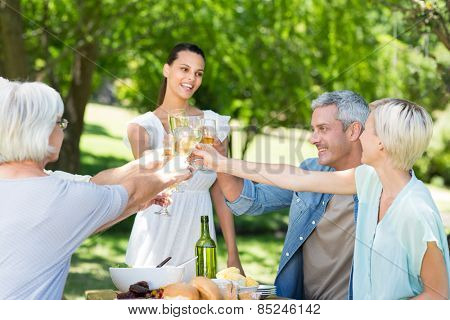 Pretty brunette toasting with her family on a sunny day