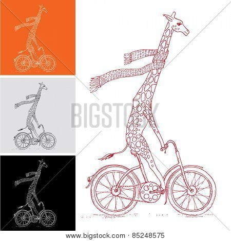 Vector Giraffe on the Bicycle