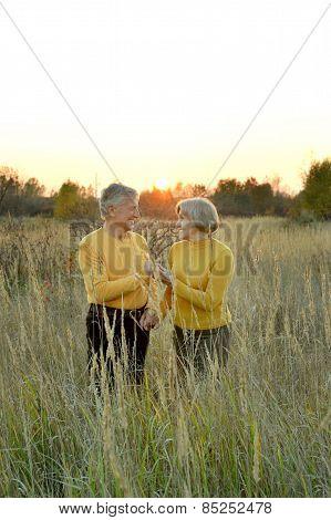 Beauteous old couple