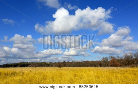 Nice clouds over meadow with dry grass