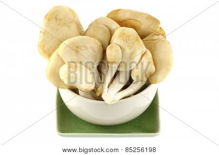 A bowl of fresh Abalone Mushroom isolated on white