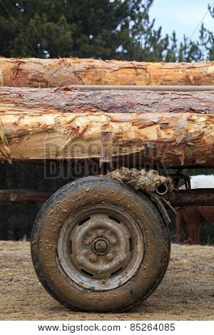 Wooden Logs On A Horse Cart