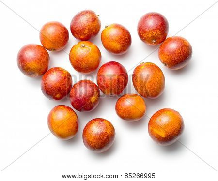 blood red oranges on white background