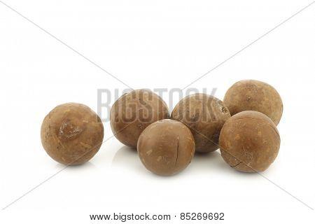 Macadamia nuts (Macadamia tetraphylla) on a white background