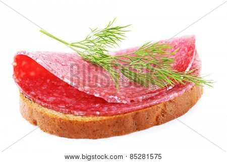 Sandwich with salami and dill isolated on white