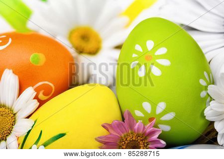 Easter Eggs And Flowers Closeup