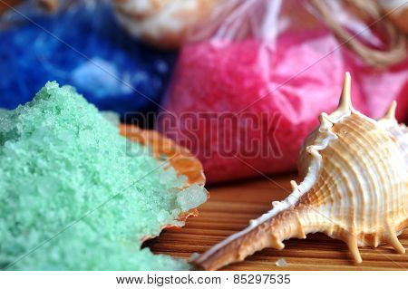 Sea Cockleshells And Salt