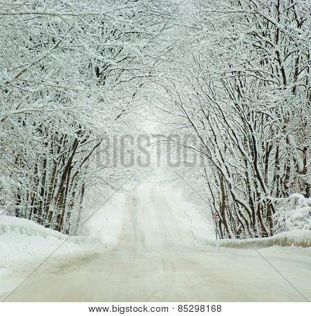 Cold Winter Landscape Of A Road