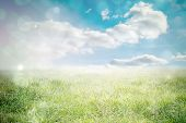 stock photo of shimmer  - Light design shimmering on green against sunny landscape - JPG