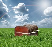 stock photo of treasure chest  - Treasures chest in green grass and blue cloudy sky - JPG