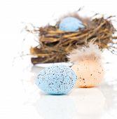 pic of bird egg  - Easter eggs in bird nest isolated on white background - JPG