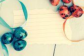 pic of quail egg  - Easter background - JPG