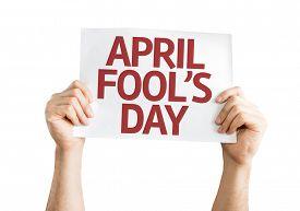 pic of fool  - April Fool - JPG