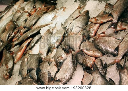Fresh Bream Fish In Market