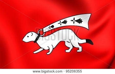 Flag Of Vannes, France.