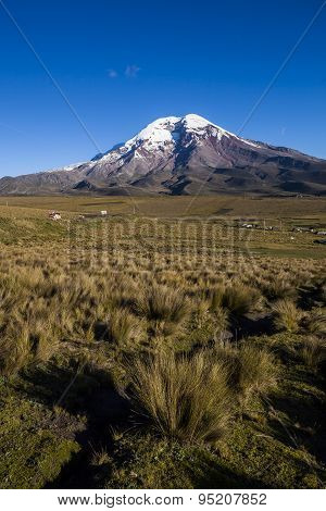 Chimborazo Volcano And moor