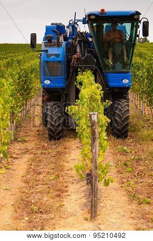 Grape Harvesting Vehicle