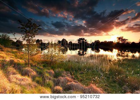 Fire Sunset On Wild Lake