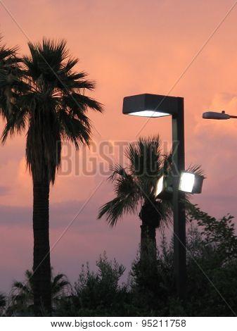 Phoenix sunset sky
