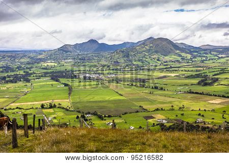 Cultivated Fields In The Andes, Machachi