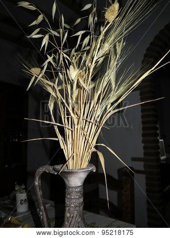 Dry Corn In Vase