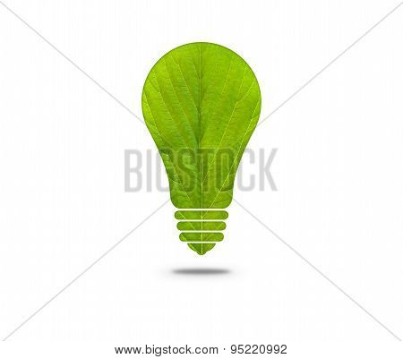 Green leaf light bulb
