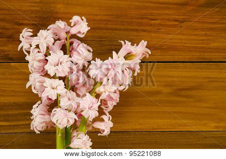 Background With Fresh Flowers Hyacinths And Wooden Planks. Place For Text.