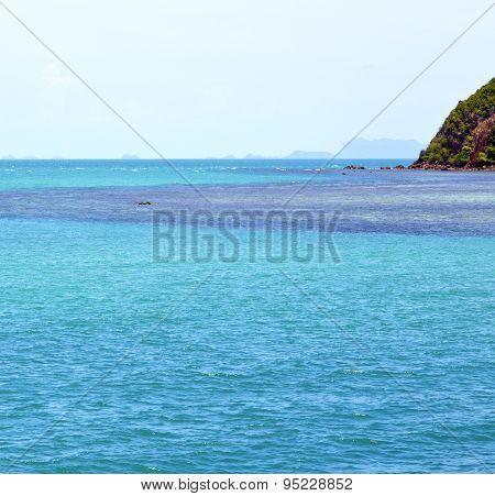 Phangan  Bay  Coastline Of A Green Lagoon And Tree