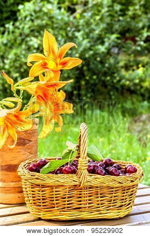 Cherries In A Basket And Flowers Daylily