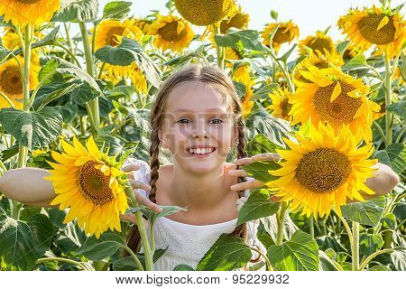 Cheerful Girl Hiding In The Sunflowers