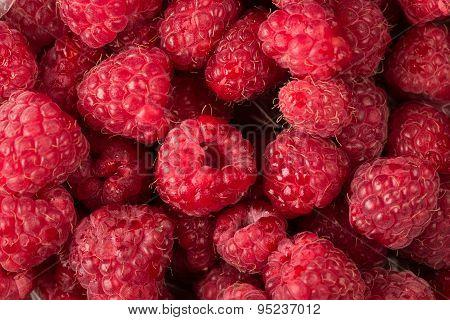 Raspberry Fruit Background