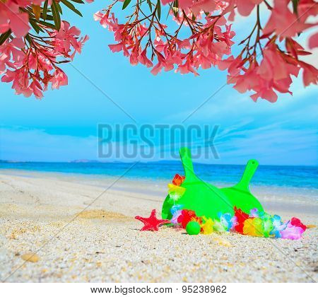 Beach Rackets Under Pink Flowers