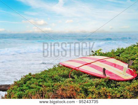 Vintage Surfboard On A Green Bush