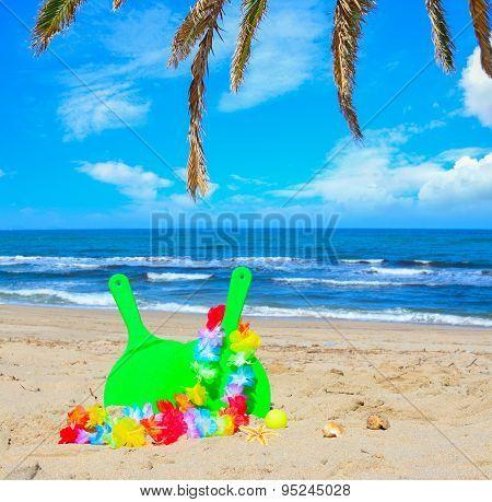 Beach Rackets Under Palm Branches