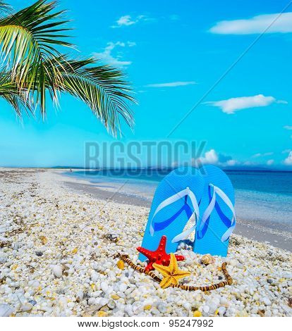 Blue Sandals And Seastars On White Pebbles