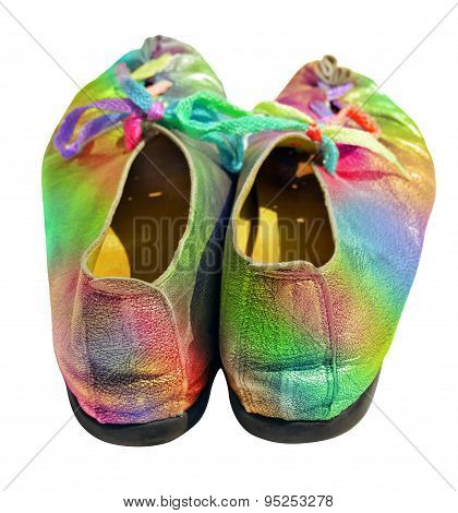 Ladies Fun Rainbow Shoes