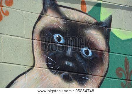 Street art Montreal Siamese cat