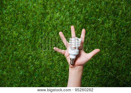 Human hand holding energy saving lamp