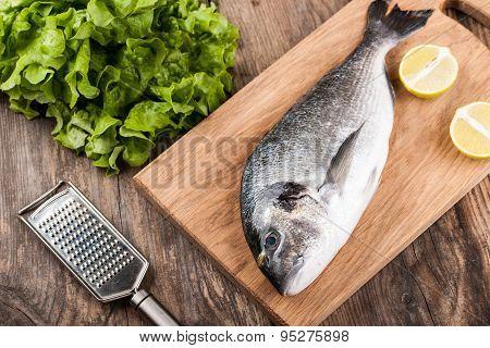 Raw Fresh Fish Dorado