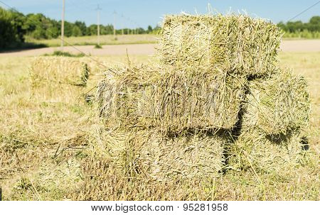 Cubic Bales Of Dry Hay