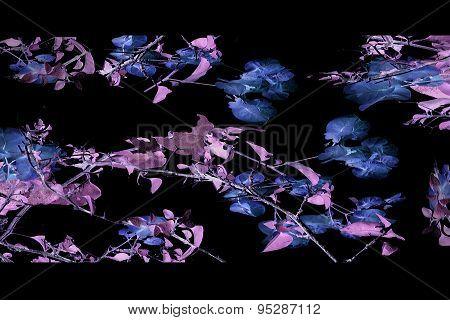 Dark Nature Collage Background