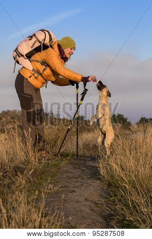 Hiker and dog