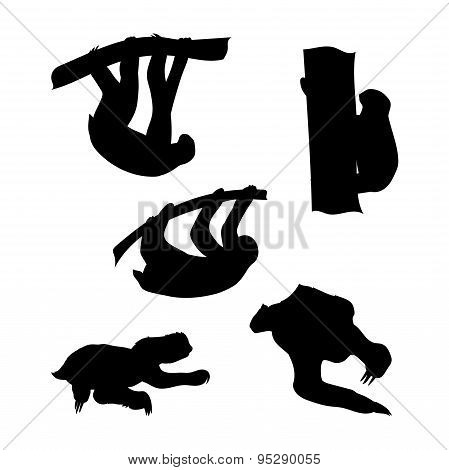 Vector silhouettes of a sloth.